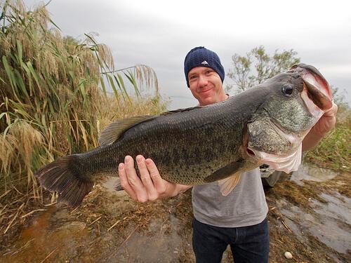 この画像は、サイトの記事「『釣りよかでしょう バス釣り大会』 ネットで話題 YouTube公式動画ご紹介!」のイメージ写真画像として利用しています。
