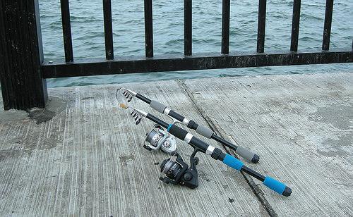 この画像は、サイトの記事「釣り 初心者 道具 ネットで話題 魚釣り専門 YouTube注目無料視聴動画ご紹介!」のイメージ写真画像として利用しています。