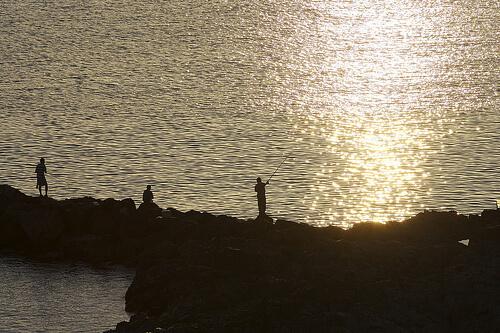 この画像は、サイトの記事「釣り 初心者 堤防 ネットで話題 魚釣り専門 YouTube注目無料視聴動画ご紹介!」のイメージ写真画像として利用しています。