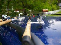 この画像は、サイトの記事「釣り 初心者 竿 ネットで話題 魚釣り専門 YouTube注目無料視聴動画ご紹介!」のイメージ写真画像として利用しています。