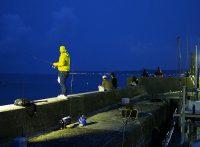 この画像は、サイトの記事「『釣りビジョン アジング』 ネットで話題 YouTube公式動画ご紹介!」のイメージ写真画像として利用しています。