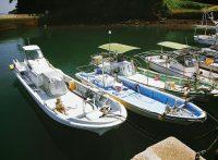 この画像は、サイトの記事「『釣りいろは 鹿児島』 ネットで話題 YouTube公式動画ご紹介!」のイメージ写真画像として利用しています。