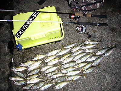 この画像は、サイトの記事「アジ釣り ルアー ネットで話題 魚釣り専門 YouTube注目無料視聴動画ご紹介!」のイメージ写真画像として利用しています。