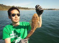 この画像は、サイトの記事「マゴチ 釣り方 ネットで話題 魚釣り専門 YouTube注目無料視聴動画ご紹介!」のイメージ写真画像として利用しています。