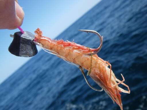 この画像は、サイトの記事「一つテンヤ 釣り方 ネットで話題 魚釣り専門 YouTube注目無料視聴動画ご紹介!」のイメージ写真画像として利用しています。