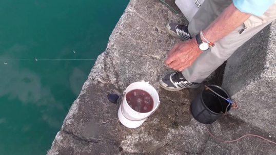 この画像は、サイトの記事「アジ釣り 仕掛け ネットで話題 魚釣り専門 YouTube注目無料視聴動画ご紹介!」のイメージ写真画像として利用しています。