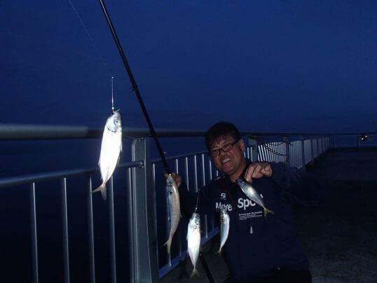 この画像は、サイトの記事「アジ釣り 堤防 ネットで話題 魚釣り専門 YouTube注目無料視聴動画ご紹介!」のイメージ写真画像として利用しています。