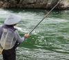 この画像は、サイトの記事「鮎釣り ネットで話題 魚釣り専門 YouTube注目無料視聴動画ご紹介!」のイメージ写真画像として利用しています。