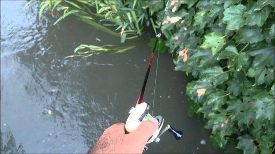 この画像は、サイトの記事「うなぎ 釣り 用水路 ネットで話題 魚釣り専門 YouTube注目無料視聴動画ご紹介!」のイメージ写真画像として利用しています。