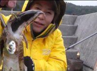 この画像は、サイトの記事「『釣りスギ四平 イカ』 ネットで話題 YouTube公式動画ご紹介!」のイメージ写真画像として利用しています。