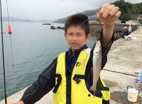 この画像は、サイトの記事「キス 釣りよか ネットで話題 魚釣り専門 YouTube注目無料視聴動画ご紹介!」のイメージ写真画像として利用しています。