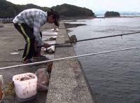 この画像は、サイトの記事「ヒラメ 釣り 堤防 ネットで話題 魚釣り専門 YouTube注目無料視聴動画ご紹介!」のイメージ写真画像として利用しています。