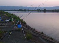 この画像は、サイトの記事「うなぎ 釣り方 ネットで話題 魚釣り専門 YouTube注目無料視聴動画ご紹介!」のイメージ写真画像として利用しています。