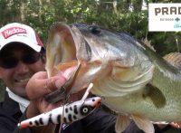 この画像は、サイトの記事「『プラドコTV バス釣り動画』 ネットで話題 YouTube公式動画ご紹介!」のイメージ写真画像として利用しています。