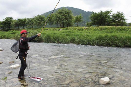 この画像は、サイトの記事「鮎釣り 引き釣り ネットで話題 魚釣り専門 YouTube注目無料視聴動画ご紹介!」のイメージ写真画像として利用しています。