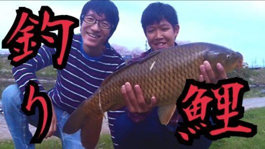 この画像は、サイトの記事「『井嶋あきら 鯉』 ネットで話題 YouTube公式動画ご紹介!」のイメージ写真画像として利用しています。