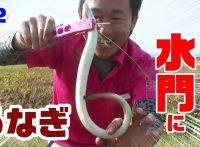 この画像は、サイトの記事「『釣りいろは うなぎ』 ネットで話題 YouTube公式動画ご紹介!」のイメージ写真画像として利用しています。