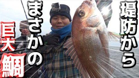 この画像は、サイトの記事「『釣りよかでしょう 鯛』 ネットで話題 YouTube公式動画ご紹介!」のイメージ写真画像として利用しています。