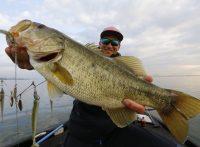 この画像は、サイトの記事「『ルアーニュース 琵琶湖』 ネットで話題 YouTube公式動画ご紹介!」のイメージ写真画像として利用しています。