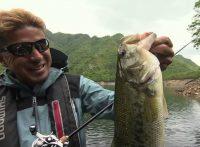 この画像は、サイトの記事「『釣り百景 バス』 ネットで話題 YouTube公式動画ご紹介!」のイメージ写真画像として利用しています。