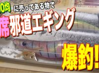 この画像は、サイトの記事「『釣りばっかい エギング』 ネットで話題 YouTube公式動画ご紹介!」のイメージ写真画像として利用しています。